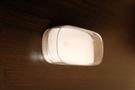 Apple Magic Mouse (MB829)
