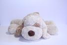 М'яка іграшка «Собачка сплюшка»