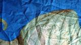Підковдра Sharp Shirter Sea Creatures Duvet Cover, 223x223 см.